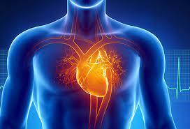 Heart disease treatment options